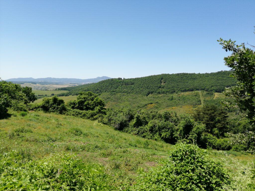 Sentiero Acquacalda / Acquachiara – Acquapendente (VITERBO)